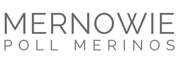 Mernowie Poll Merinos
